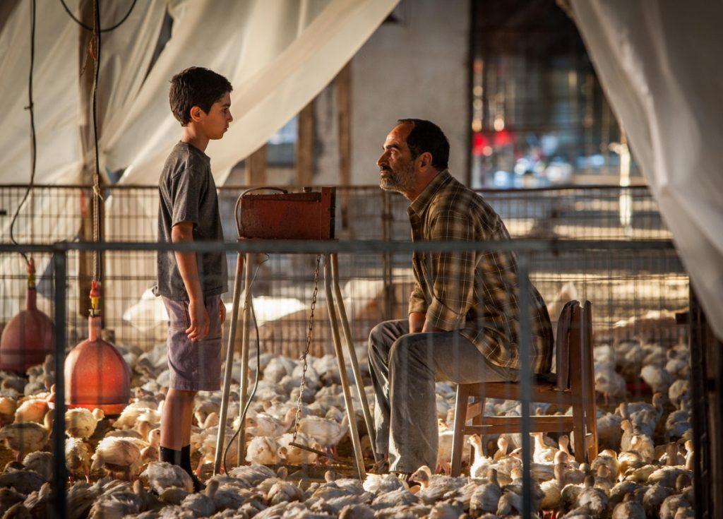 Padre e hijo en el interior de la granja.